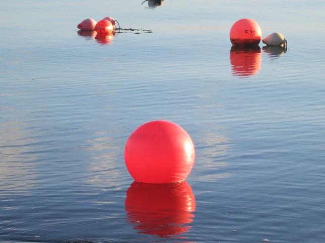 Abandoned buoys