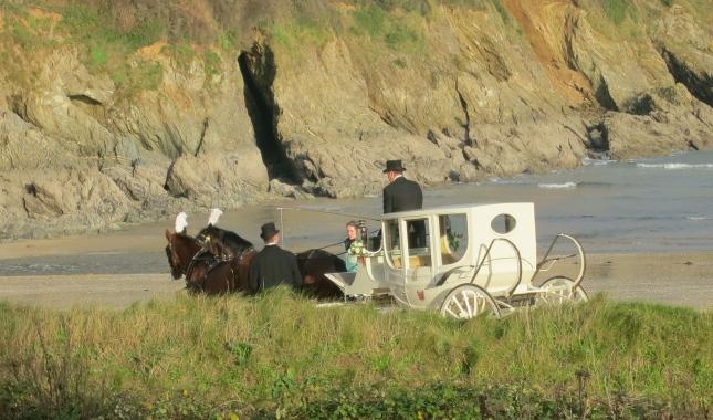 Horse-drawn Wedding carriage