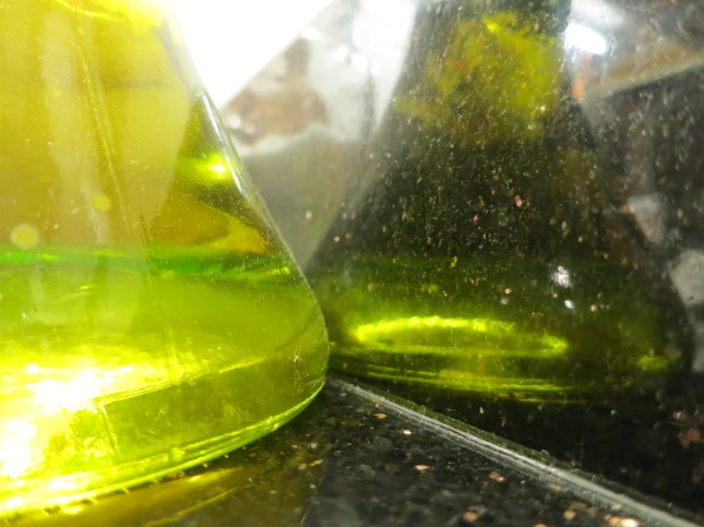 Olive oil and a reflection