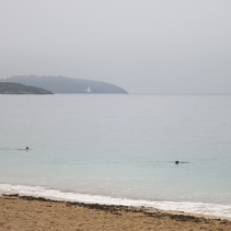 Woman and dog swimming off Gyllyngvase Beach