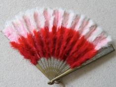 Beautiful feather fan