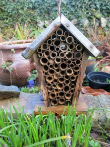 Home for insects