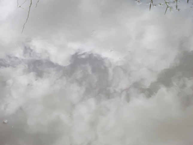 Clouds in a puddle
