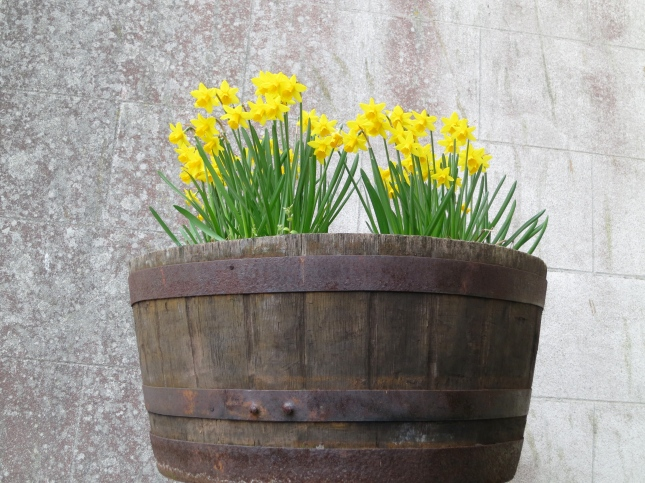 Flowers in a half-barrel on to of a pole