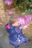 Grand-baby and Lavatera