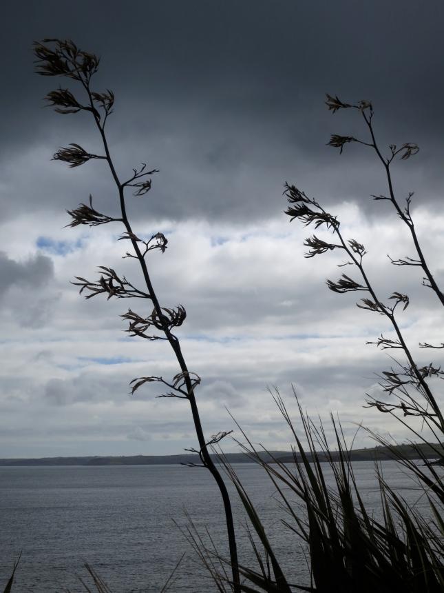 Dark and moody sky