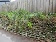 Cornish hedge 2