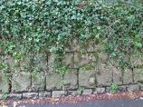 Cornish hedge 4