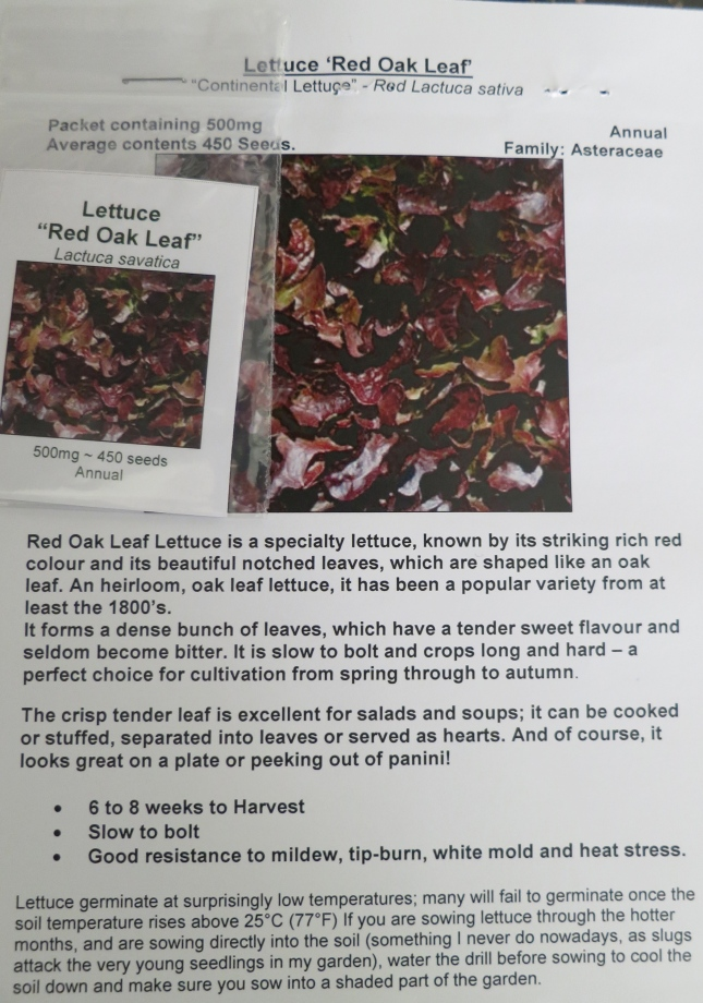 Red Oak Leaf Lettuce seeds