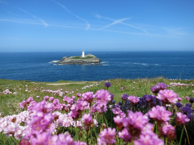Godrevy Lighthouse, blue sea and pink Thrift