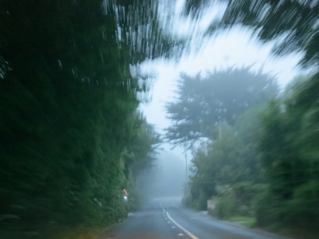 Driving home in the mist