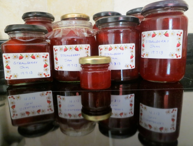 Strawberry Jam 20th July 2013