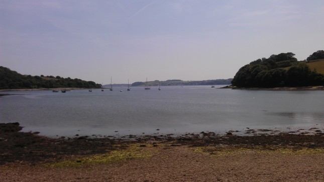 The beach at Trelissick