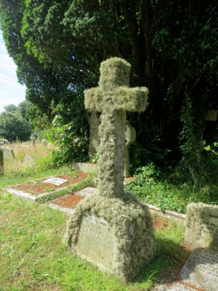 A lichen covered cross