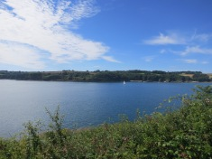 Peaceful view across the Helford