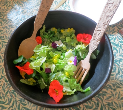 Home grown salad