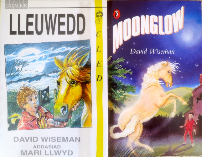 'Moonglow' and 'Lleuwedd'