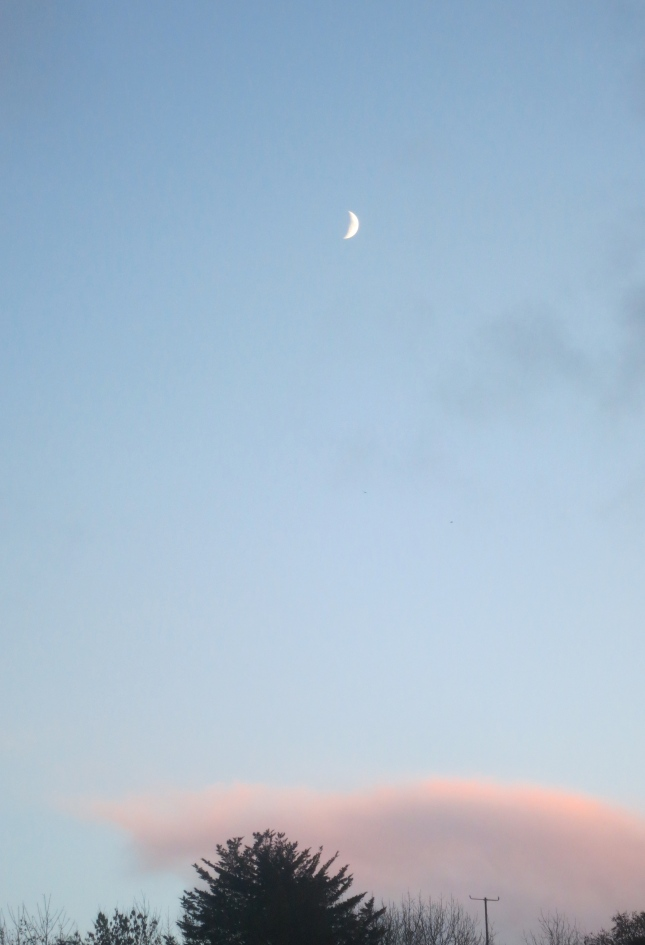 The waxing crescent of the moon