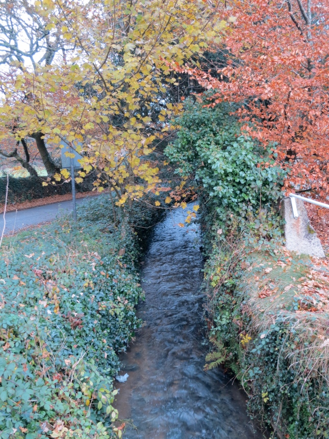 The stream at Gwennap, featured in Dad's book, Jeremy Visick