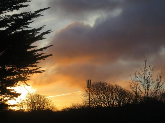 Winter sunrise