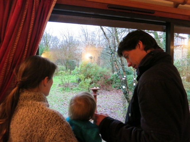 Our dear twins and our Grandbaby watching the birds together