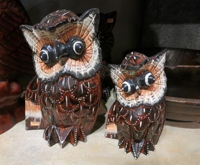 Delightful owls