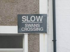 Just the best road sign ever!