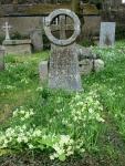Primroses and a Cornish Cross