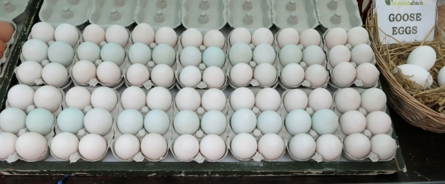 Beautiful pale blue duck eggs