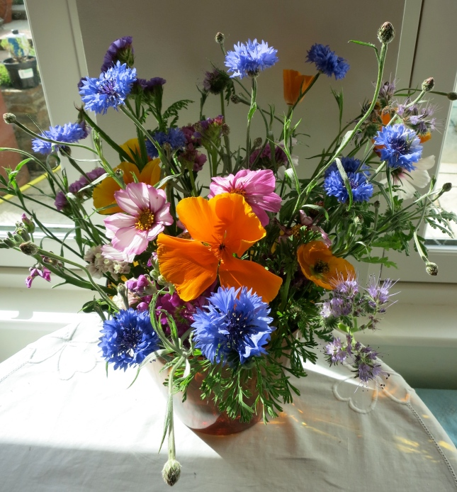 Flowers from Hayle