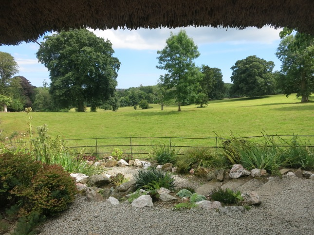 View from 'Lazy Tremblings of the Summer Air' audio installation by Jane Bailey