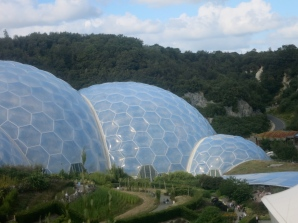 The biomes