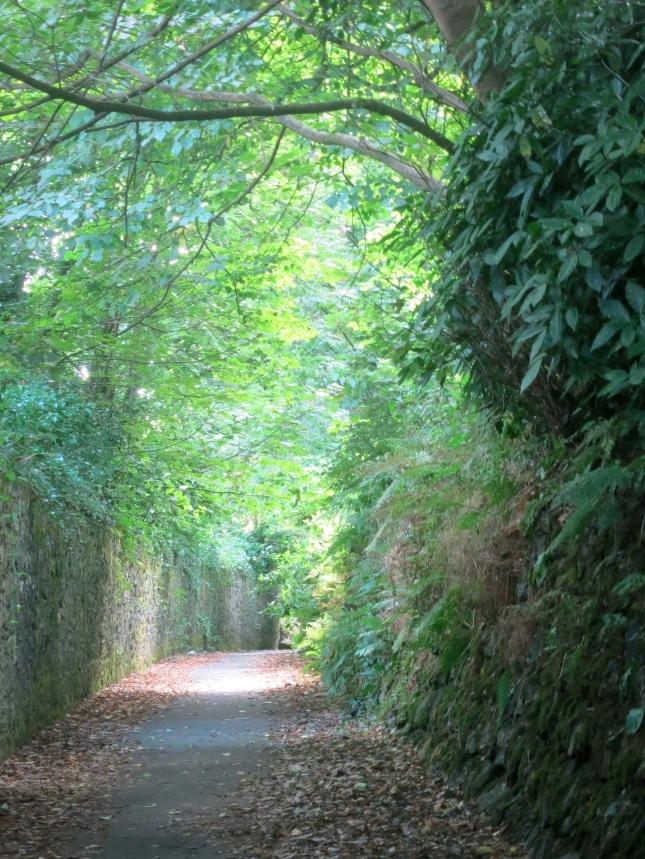 Lovers' Lane in sunlight