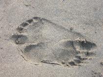 A pair of footprints