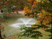 Fountain, geese and Autumn colours in the park