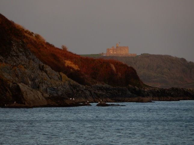 Pendennis Castle from Maenporth