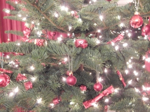 Tree at Trelissick
