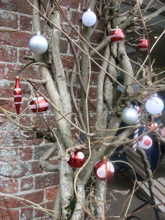 Baubles on the Wisteria
