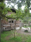 Stacking wood - with goats and a window