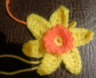 My first daffodil