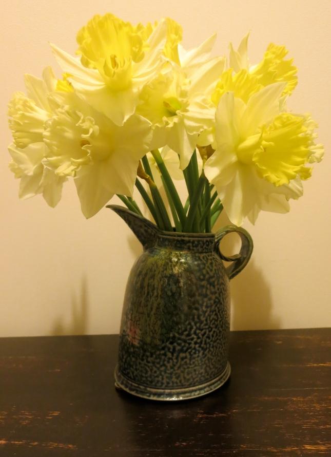 Pale daffodils in a Jane Hamlyn salt-glaze jug