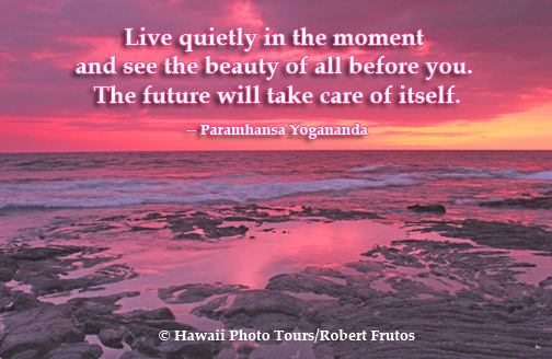 Live quietly in the moment