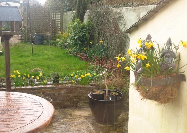 Hail shower in the back garden