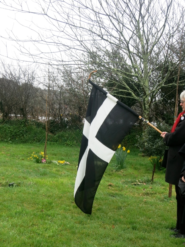 St Piran's flag and daffodils at the green burial site