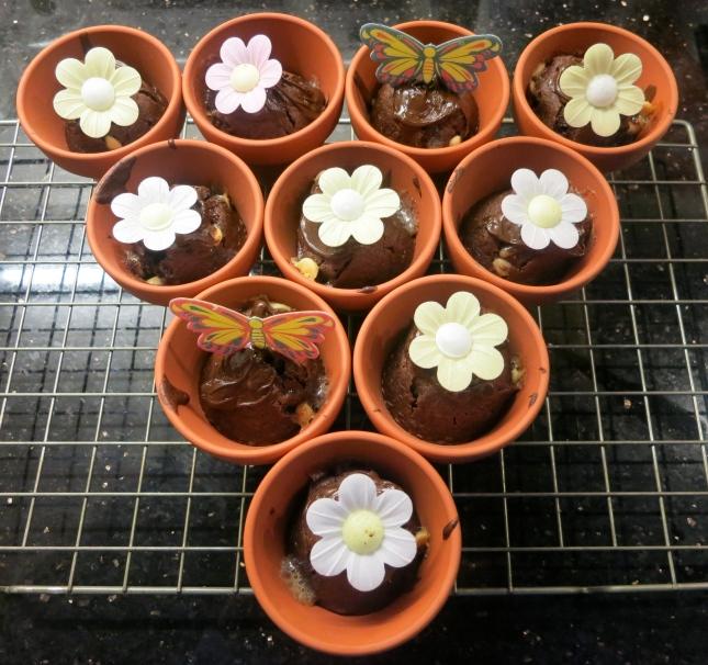 Flowerpot Muffins