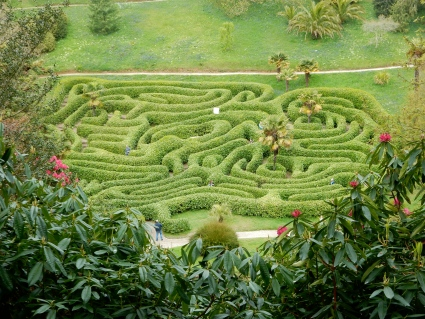 The Glendurgan Maze