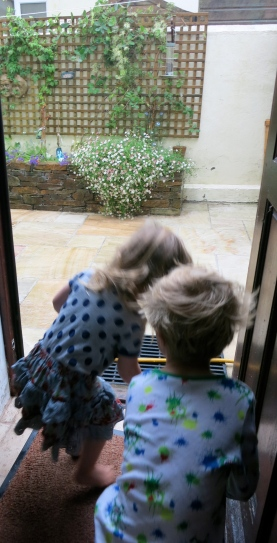 Watching the rain together