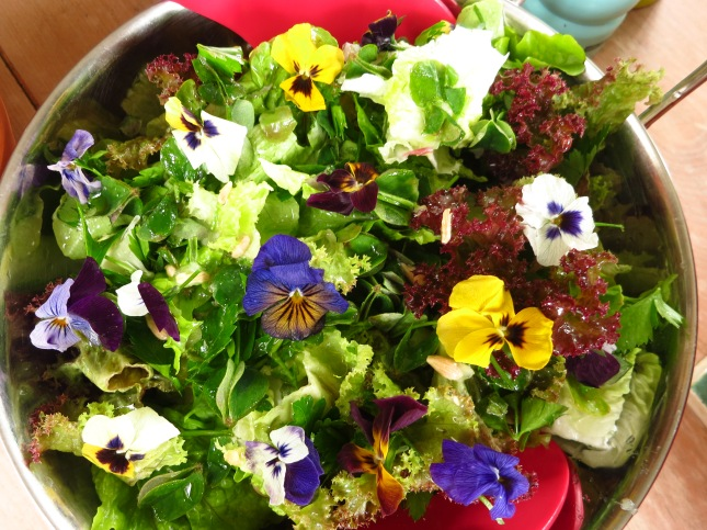 Pansies on the green salad