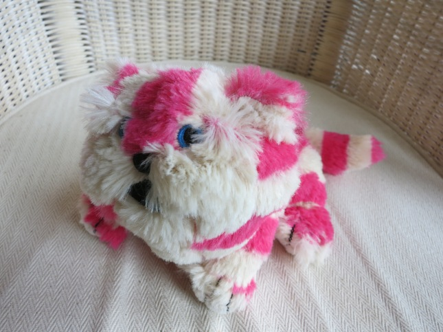 A Bagpuss kitten