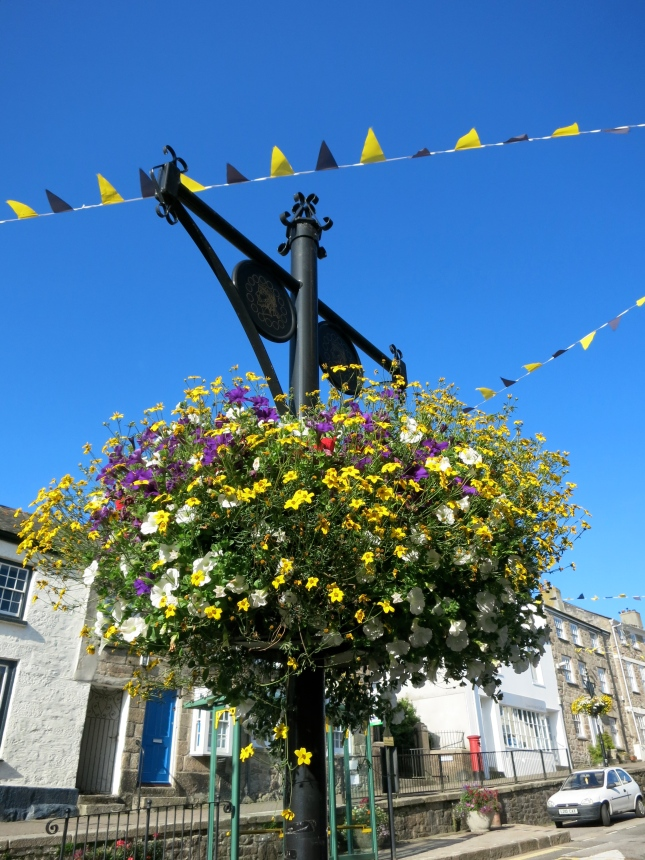 Flowers in Penryn